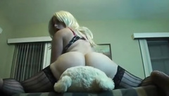Teddy Bear Humping